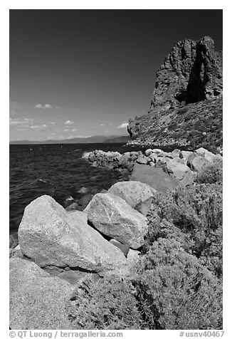 Sagebrush and Cave Rock, Lake Tahoe, Nevada. USA (black and white)