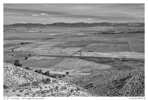 Agricultural lands, Carson Valley. Genoa, Nevada, USA (black and white)