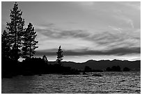 Shoreline with pine trees and rocks, Sand Harbor, East Shore, Lake Tahoe, Nevada. USA ( black and white)
