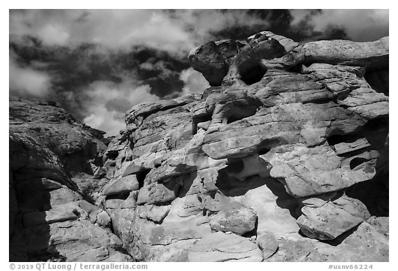 Rocks, Whitney Pocket. Gold Butte National Monument, Nevada, USA (black and white)