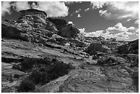 Whitney Pocket. Gold Butte National Monument, Nevada, USA ( black and white)