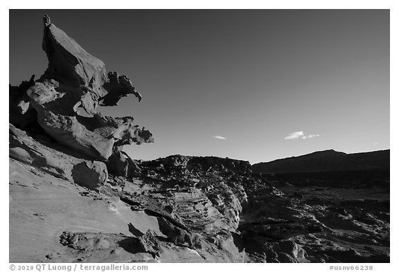 Hobgoblins Playground, afternoon. Gold Butte National Monument, Nevada, USA (black and white)