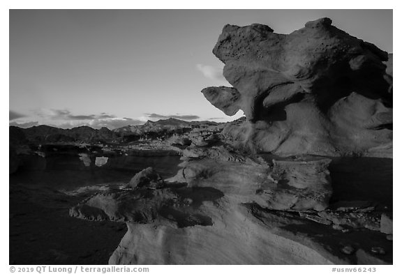 Little Finland, sunset. Gold Butte National Monument, Nevada, USA (black and white)