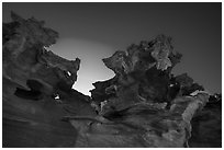 Strange red sandstone formations. Gold Butte National Monument, Nevada, USA ( black and white)
