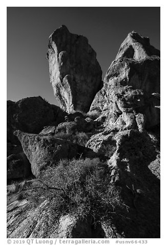 Ash-fall tuff rock towers. Basin And Range National Monument, Nevada, USA (black and white)