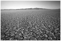 Ancient lakebed with cracked dried mud, sunrise, Black Rock Desert. Nevada, USA (black and white)