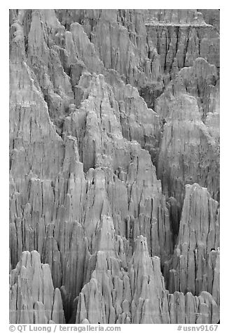 Shale and mudstone eroded in fantastic shapes, Cathedral Gorge State Park. Nevada, USA (black and white)