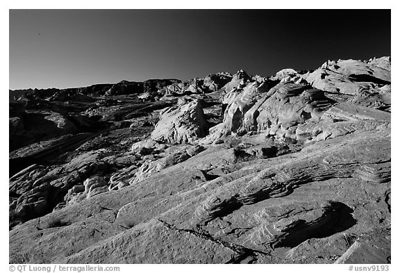 Colorful sandstone formations, early morning, Valley of Fire State Park. Nevada, USA (black and white)