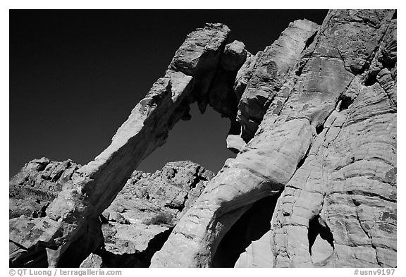 Elephant-shaped rock, Valley of Fire State Park. Nevada, USA (black and white)