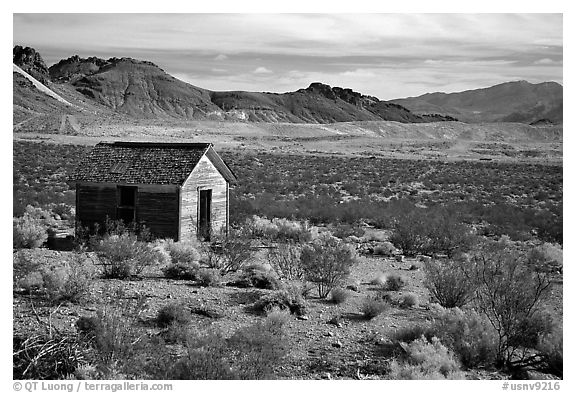 Cabin, Rhyolite ghost town. Nevada, USA (black and white)