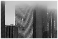 Skyscrapers in the fog at dawn. Houston, Texas, USA ( black and white)