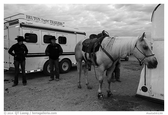 Horse, trailers, and rodeo contestants. Fort Worth, Texas, USA (black and white)