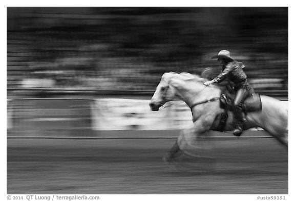 Woman on galloping horse, Stokyards Championship Rodeo. Fort Worth, Texas, USA (black and white)
