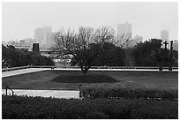 Fort Worth skyline from sculpture garden of Ammon Carter Museum. Fort Worth, Texas, USA ( black and white)