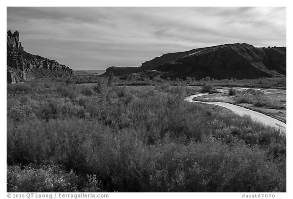 Autum foliage and stream, Cottonwood Canyon. Grand Staircase Escalante National Monument, Utah, USA (black and white)