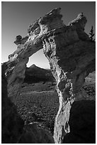 Grosvenor Arch and valley. Grand Staircase Escalante National Monument, Utah, USA ( black and white)