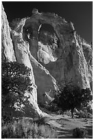 Grosvenor Arch, early morning. Grand Staircase Escalante National Monument, Utah, USA ( black and white)