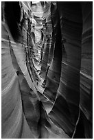 Striped walls, Zebra Slot Canyon. Grand Staircase Escalante National Monument, Utah, USA ( black and white)