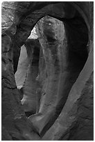 Large arches in Peek-a-Boo slot canyon. Grand Staircase Escalante National Monument, Utah, USA ( black and white)