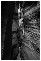 Textured walls, Spooky slot canyon, Dry Fork Coyote Gulch. Grand Staircase Escalante National Monument, Utah, USA ( black and white)