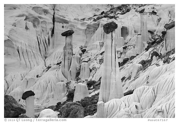 Group of silt stone caprocks. Grand Staircase Escalante National Monument, Utah, USA (black and white)