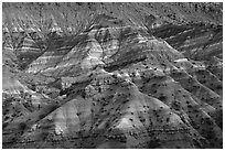 Chinle formation badlands, Old Paria. Grand Staircase Escalante National Monument, Utah, USA ( black and white)
