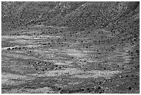 Distant detail, Valley of the Goods floor and cliffs. Bears Ears National Monument, Utah, USA ( black and white)