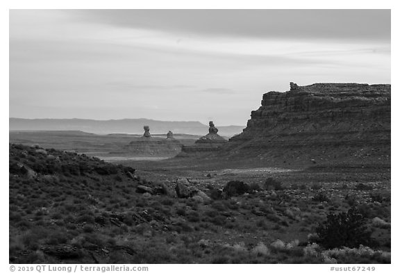 Cliff and monoliths at dusk, Valley of the Gods. Bears Ears National Monument, Utah, USA (black and white)