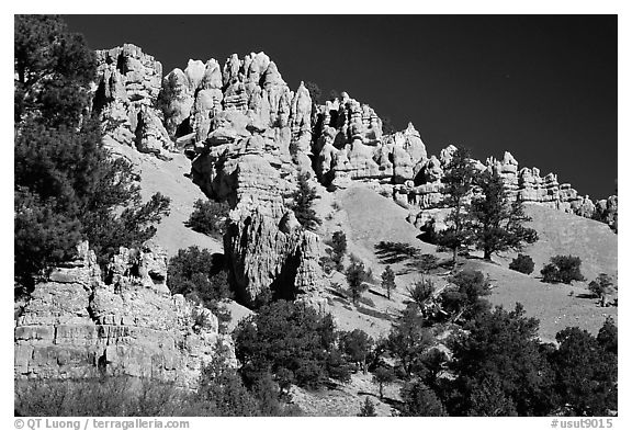 Hoodoos, Red Canyon, Dixie National Forest. Utah, USA (black and white)