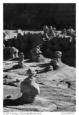 Goblins, early morning, Goblin Valley State Park. Utah, USA (black and white)