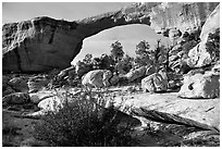 Owachomo Bridge, Natural Bridges National Monument. Utah, USA (black and white)