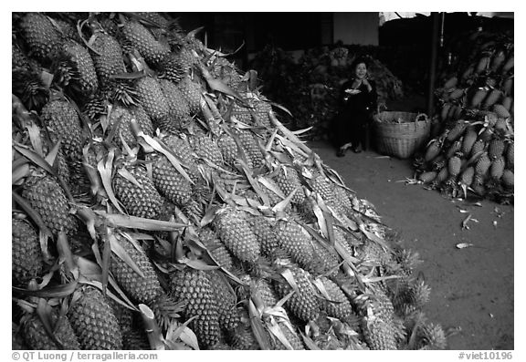 Loads of pinaaples. Cholon, Ho Chi Minh City, Vietnam (black and white)