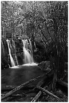 Suoi Tranh tropical waterfall. Phu Quoc Island, Vietnam ( black and white)