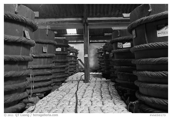 Fish Sauce factory, Duong Dong. Phu Quoc Island, Vietnam (black and white)