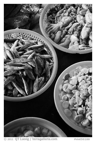 Close-up of seafood for sale in baskets, Duong Dong. Phu Quoc Island, Vietnam (black and white)