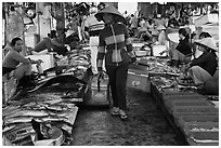 Fish market, Duong Dong. Phu Quoc Island, Vietnam (black and white)