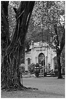 Banyan tree and gate, Cong Vien Van Hoa Park. Ho Chi Minh City, Vietnam ( black and white)