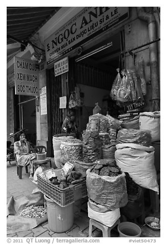 Traditional herb shop. Cholon, Ho Chi Minh City, Vietnam (black and white)