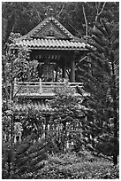 Bell tower, Giac Lam Pagoda, Tan Binh District. Ho Chi Minh City, Vietnam ( black and white)