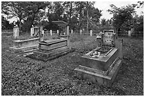 Graves in family cemetery with fresh offerings. Ben Tre, Vietnam ( black and white)
