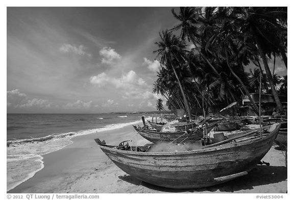 Beach with palm trees and fishing boats. Mui Ne, Vietnam (black and white)