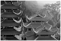 Roofs of temple and pagoda. Ta Cu Mountain, Vietnam ( black and white)