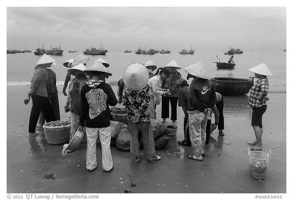 Women gathered on beach around fresh catch. Mui Ne, Vietnam (black and white)