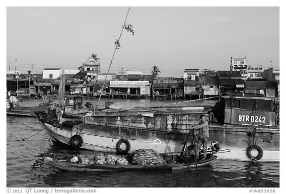 Woman steering boat with pineapple fruit, Cai Rang floating market. Can Tho, Vietnam (black and white)