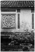 Potted plant and wall with Chinese symbol window, citadel. Hue, Vietnam (black and white)