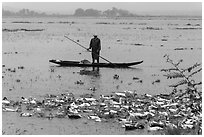 Duck herder, Thanh Toan. Hue, Vietnam (black and white)