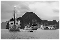 White tour boats. Halong Bay, Vietnam ( black and white)