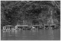 Vung Vieng fishing village. Halong Bay, Vietnam ( black and white)