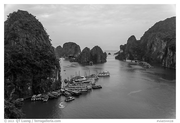 Tour boats anchored at base of island. Halong Bay, Vietnam (black and white)