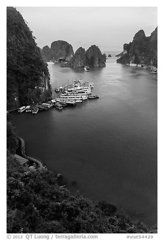 View over bay and boats from Surprise Cave exit. Halong Bay, Vietnam (black and white)